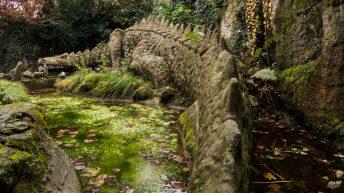 Königswinter - Auf dem Drachenfels