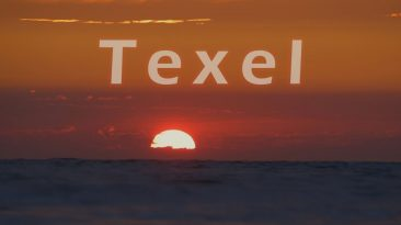 Some Days On Texel
